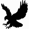 eagle-icon-png-17408